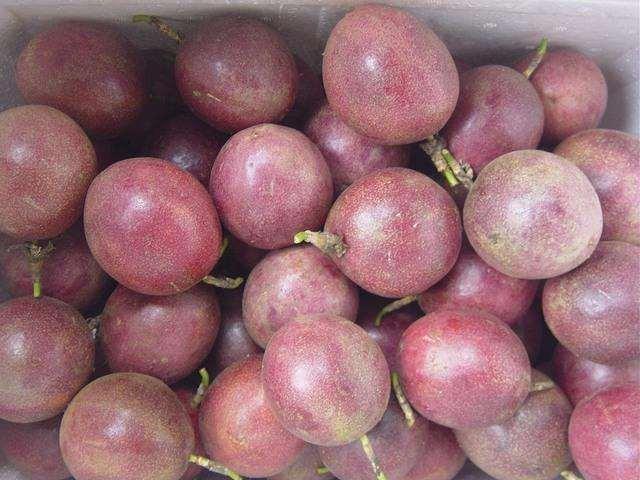 百香果供应,自家庄园一手资源,长期有果