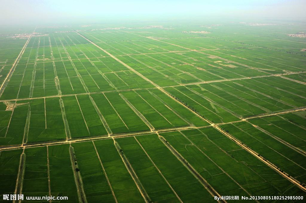 农业品牌策划应该怎么做