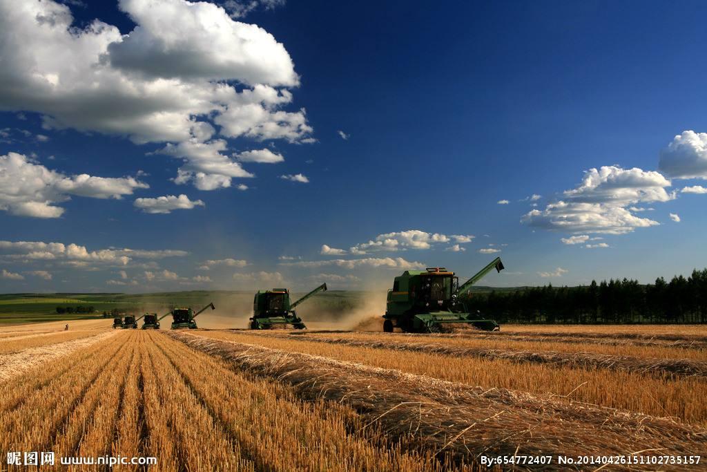 农业品牌策划多久能成功呢?