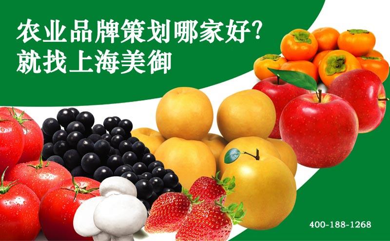 中国欧宝体育APP下载农业-农业欧宝体育APP下载建设,农业欧宝体育APP下载资讯,农业欧宝体育APP下载包装