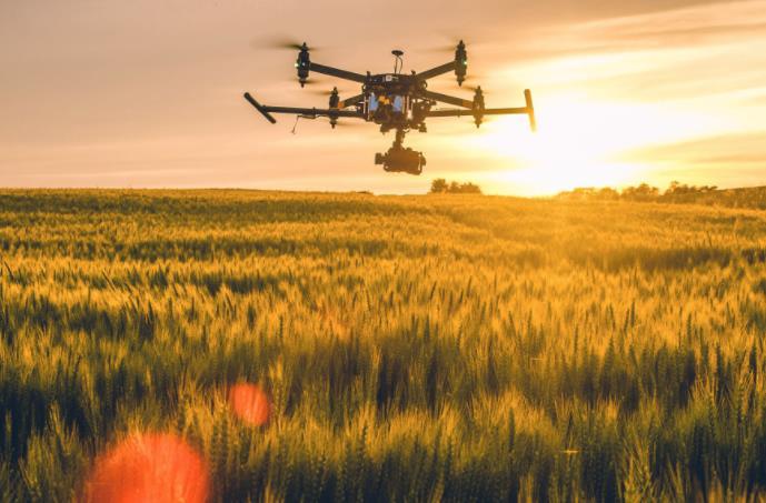 农业发展战略策划 农产品品牌策划设计公司