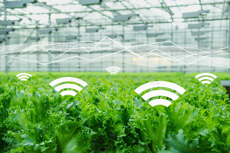 互联网农业品牌定位应该找哪些人来做?