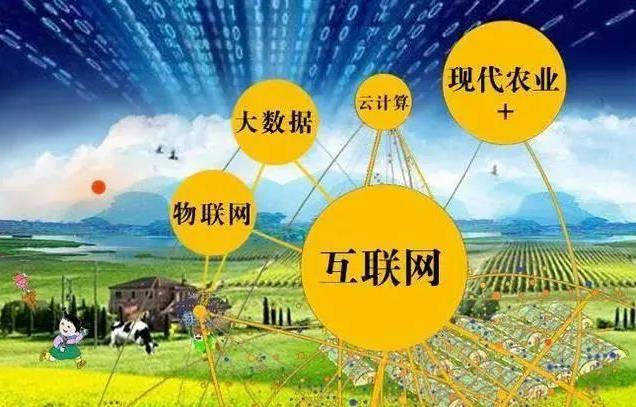 农业商业模式有哪些_农业商业模式创新