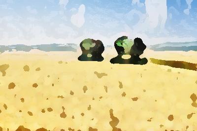 农业公司品牌形象提升,实现农业增效、农民增收
