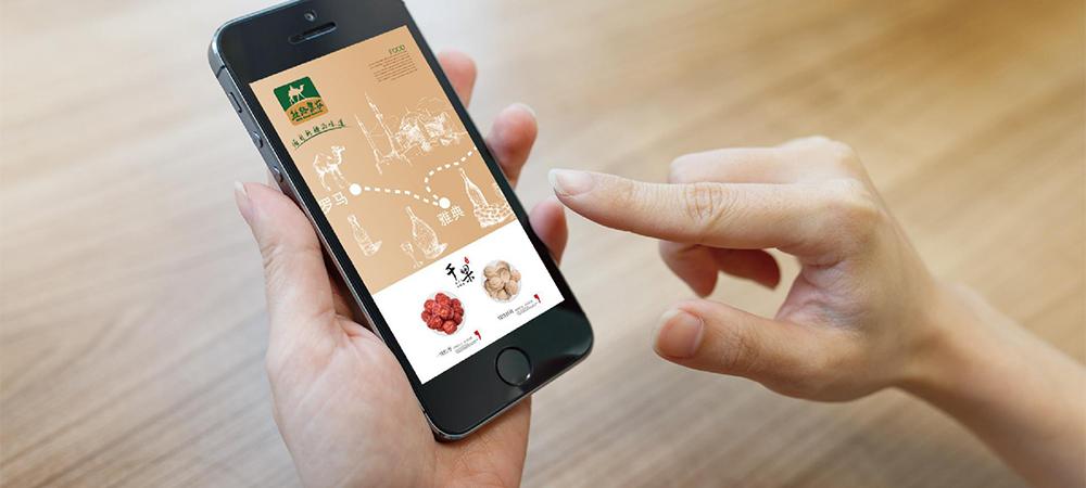 农业品牌策划与定位