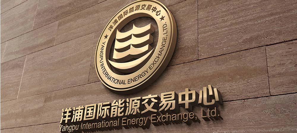 洋浦国际能源品牌VI设计