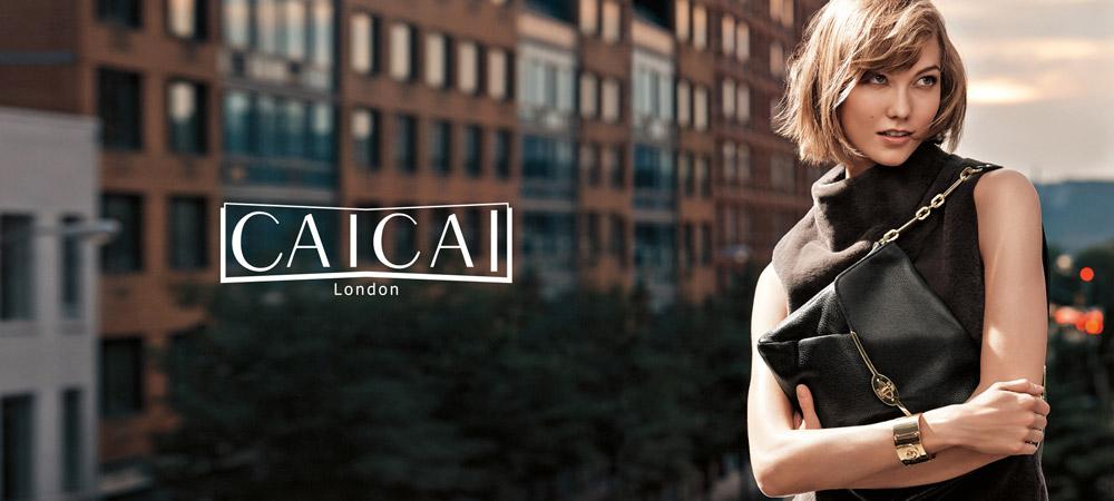 CAICAI蔡蔡箱包品牌设计
