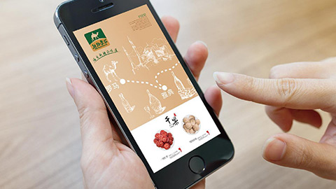农业品牌策划,农产品品牌设计